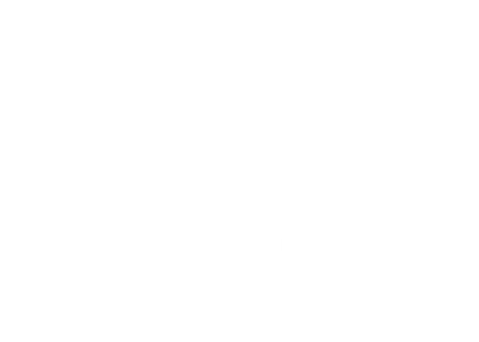 netlinkdatasolutions.com